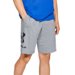 Under Armor Shorts Sportstyle in Gray Cotton